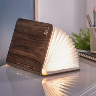 Read more about Smart Book Light