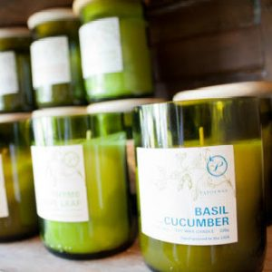 An image of a shelf full of candles which are made from green eco friendly jars. The label on the image is of a Basil and Cucumber candle.