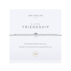 A silver plated bracelet on a cotton adjustable bracelet which is wrapped around a square card with the wording 'A Little Friendship' printed on it.