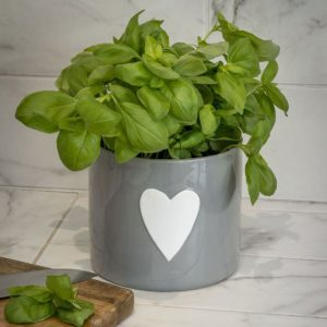 A grey ceramic planter with white heart on the front of it.
