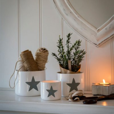 Read more about White Ceramic Pot with Grey Star