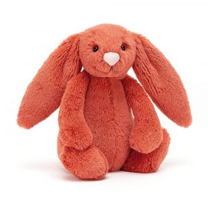 A cinnamon bunny soft toy