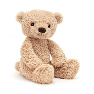 A gorgeous teddy bear. Toffee coloured with tousled fur