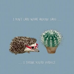 A cute card from British card designer Sally Scaffardi with an image of a hedgegog and a cactus plant and the wording 'I don't care what anyone says I think you're perfect.' printed on it.